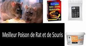 Produit Pour Tuer Les Souris : meilleur poison de rat et de souris top 5 le rodenticide le plus efficace ~ Melissatoandfro.com Idées de Décoration