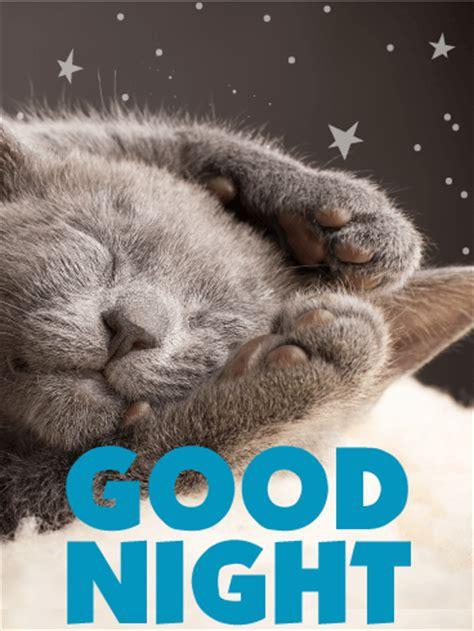 sleeping kitty good night  card birthday greeting