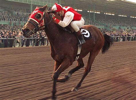seabiscuit horses famous movie horse movies racing tv inspired true events champion played eonline marker