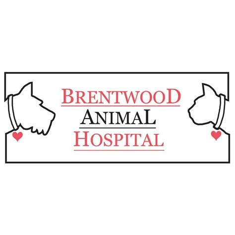 bill me later phone number brentwood animal hospital 11 reviews vets 2907 s