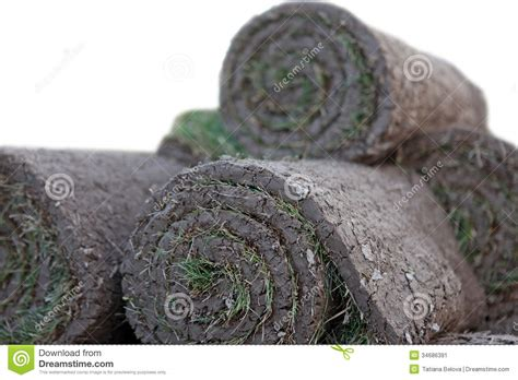 ready lawn cost turf grass rolls stock image image 34686391