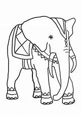 Elephant Coloring Pages Elephants Drawing Funny African Silhouette Getdrawings Clipartqueen sketch template