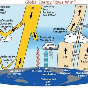 Unit 3  Energy Flows And Feedback Processes