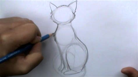 draw  basic cat sitting  art ala carte