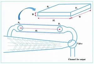 Schematic Diagram Of The Portion Of Micro
