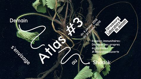hervé cuisine cookies strasbourg laboratoire de demain atlas 1 shadok
