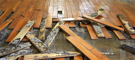 effects  water damage  building materials juvenaire