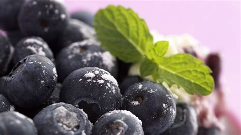 blueberry hd wallpaper background image  id