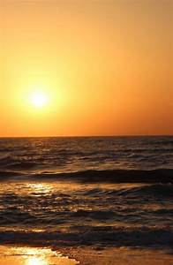 Pin Beach-sunset-tumblr-theme on Pinterest