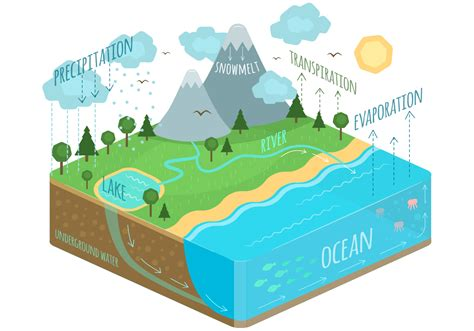 Water Cycle Images Water Cycle Free Vector Stock Graphics