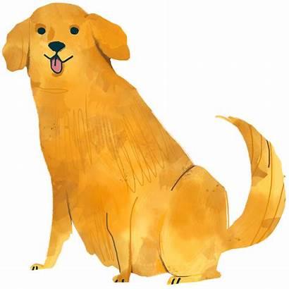 Retriever Golden Dog Transparent Rawpixel Sitting Drawing