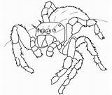 Template Spider Coloring Templates Colouring Realistic Shape Printable Crafts Halloween Huge Premium Drawing sketch template
