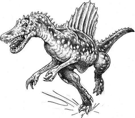 Allosaurus Kleurplaat by Spinosaurus Vs T Rex Colouring Pages Spinosaurus Coloring