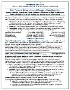 Resume samples chief financial officer cfo consumer cpg for Cfo resume examples