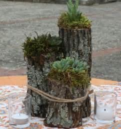 originelle ideen hochzeit sukkulenten arrangement ideen tipps zur pflanzenpflege
