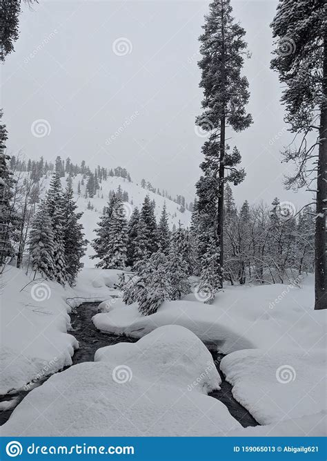Walking In A Winter Wonderland Stock Image Image of
