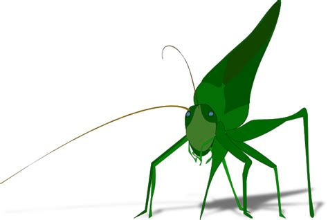 Cartoon Grasshopper With Shadow Clip Art At Clker.com