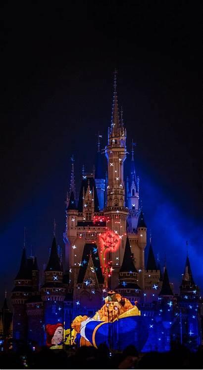 Magic Fireworks Kingdom Happily Ever Disney Castle