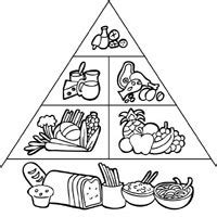 food pyramid coloring pages surfnetkids