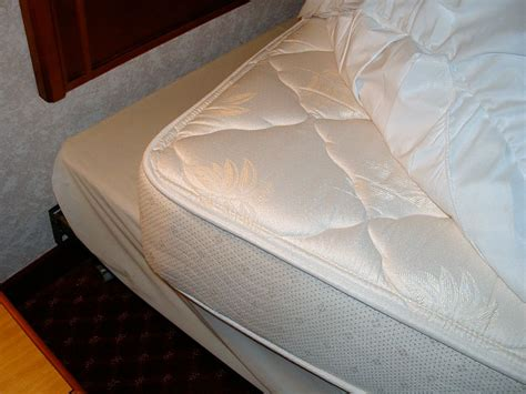 what does bed bugs look like on mattresses what do bed bugs look like bed bug pictures