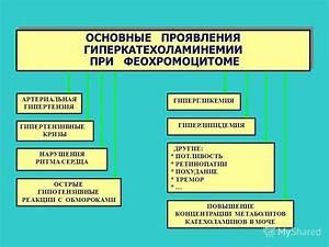 Калина с медом рецепт от гипертонии