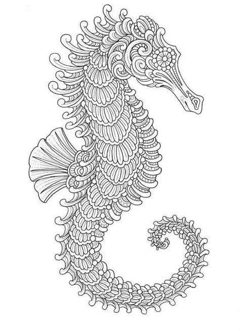intricate coloring pages 2370 best intricate coloring pages for adults images on