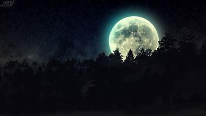 Moon Night Forest Stars Wallpapers Desktop Mobile