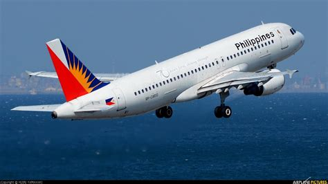 short guy philippine airlines  shining