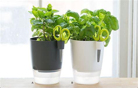 Elho Windowsill Herb Pot Gardening Herbs Pinterest