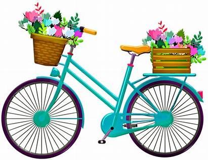 Bicycle Bicyclette Flowers Pixabay Sepeda Keranjang Bike