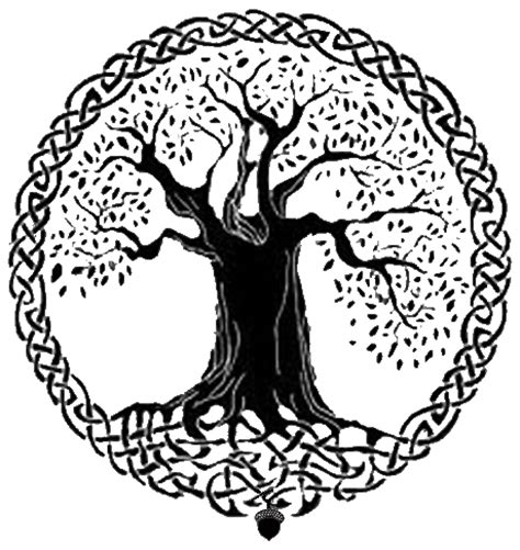 Celtic Tree Life Meanings Symbols