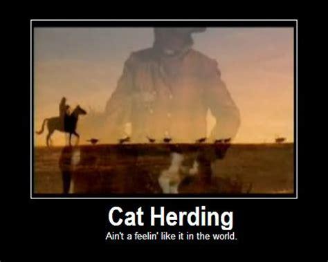 Herding Cats Meme - herding cats quotes quotesgram