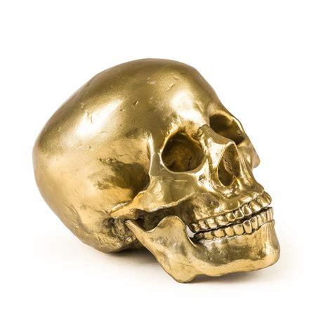 wunderkammer quot culture skulture quot human skull panik design