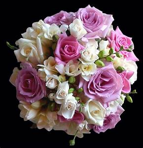 purple and cream rose and freesia calgary wedding flower ...