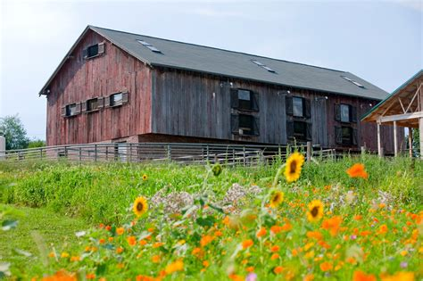 Barns And by Historic Barns Traders Point Creamery