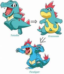 Totodile Evolution Poku00e8mon Pinterest Evolution