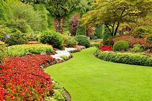 Child Friendly Backyard Landscaping | DeCarlo Landscaping