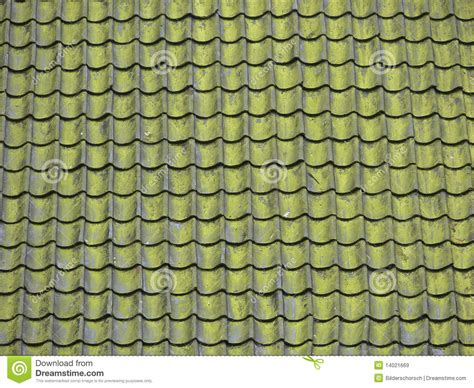 Roof-moss Royalty Free Stock Images Best Way To Remove Moss From Roof Roofing Material Calculator Kool Seal Rubber Coating Red Inn Las Vegas Wilmington Nc Rafter Length Tar Paper Top Pictures