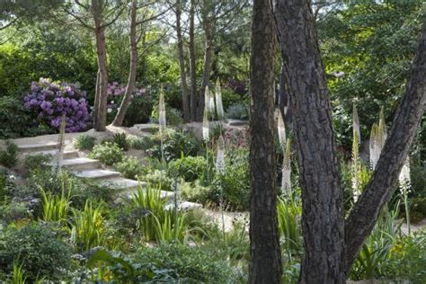 jardin agapanthe dieppe france top tips before you go