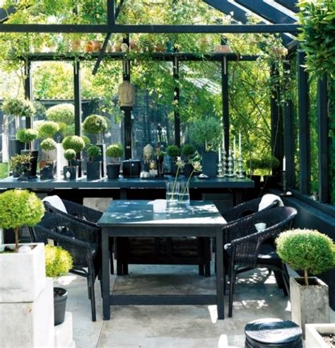 tips  winter garden green oasis center privacy