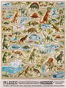 Dino Size Chart Google Search Dinosaur Posters