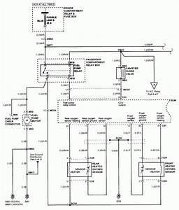 Hyundai Elantra  No Power To Fuel Pump 1999 Sedan