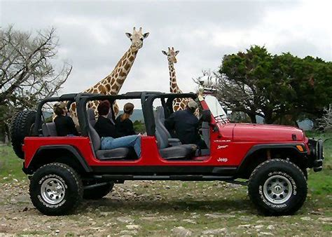 introducing  jeep limo perfect