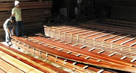 hardwood in the philippines sawn timber ad kd softwood hardwood philippines filtra timber