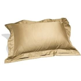 Buy A High Quality Hotel Bed Pillow For Your Home