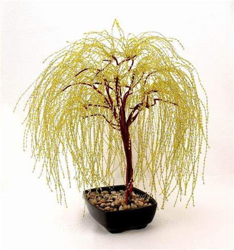 bonsai baum ideas  pinterest bonsai pflanzen