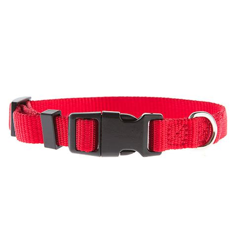 grreat choice adjustable dog collar dog collars petsmart