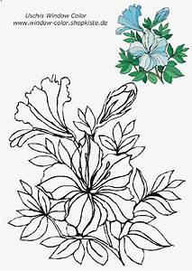 Blumen Basteln Vorlage : blumen vorlagen 1 flower coloring pinterest blumen vorlage blumen und blumen ausmalen ~ Frokenaadalensverden.com Haus und Dekorationen