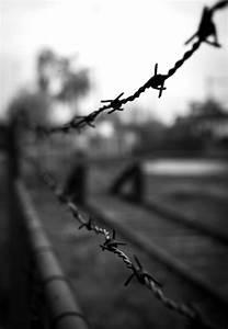 Black, And, White, Fence, Crime, Forbidden, Monochrome ...