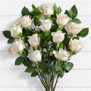 10 Long Stemmed White Roses - White Roses Delivery ...